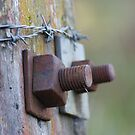 Barbwire & Bolts by Anne-Marie Ladegaard
