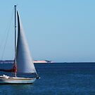 SAILS UP - FREMANTLE by Marinapallett