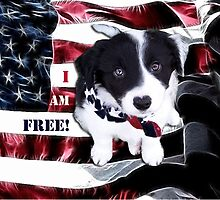 I Am Free! by Glenna Walker