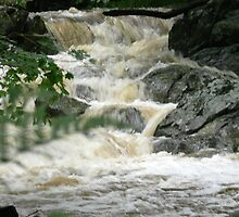 Peddler's Run Rapids by Hope Ledebur