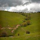 Kanimbla Valley No 1 by Rosalie Dale