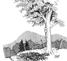 Tree Study by BobHenry