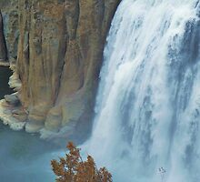 Shoshone Falls by trueblvr