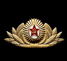 USSR army officer badge by yurix