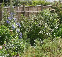 Lovely garden set on the edge of Lytchett Bay, Dorset by Songwriter