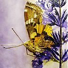 PAINTED LADY by ANNETTE HAGGER