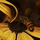 Bees at Dusk @ www.KeithMcDowellArtist.com  by  Keith McDowell, Artist