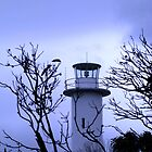 Cape Tourville Lighthouse  by Marilyn Harris