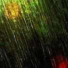 Summer rain by trbrg
