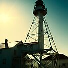 Lighthouse of Whitefish Point by Karri Klawiter