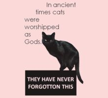 In Ancient Times Cats Were Worshipped As Gods T-Shirt
