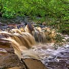 Wainwath Force - Keld 4 of 5 by Trevor Kersley