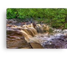 Wainwath Force - Keld 4 of 5 Canvas Print