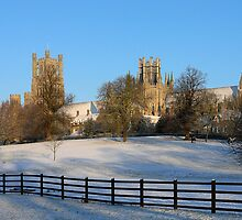 Ely Cathedral in the snow, Cambridgeshire, UK by sharpeimages