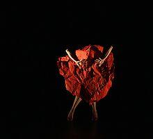 Performance of Vi-Vidas by Sonia Mota by miro65