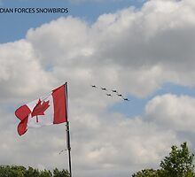 Canadian Forces Snowbirds by Lynda  McDonald