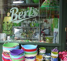 Bert's Homestore by pcimages