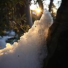 Snow at the sunset by Elena Martinello