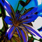 soul flower by media-sorcerer