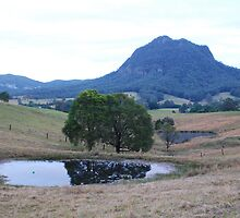 Three ponds & a mount by Graham Mewburn