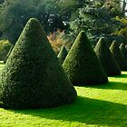 Parham House Formal Garden by Gary Heald LRPS