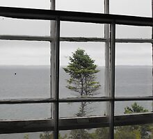 Through The Light House Window by Tracy Faught
