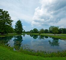 Peaceful Pond by Bonnie T.  Barry