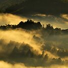gold morning mists in the mountain by patrick pichard