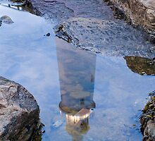 LIGHTHOUSE IN THE ROCKPOOL by Michael Halliday