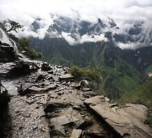 Tiger Leaping Gorge by Andrew Willesee