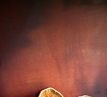 Still life Dried fruit by naffarts