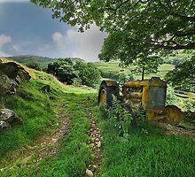 Fordson Tractor - Cumbria by eddiej
