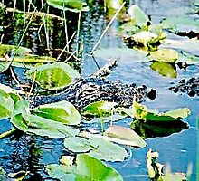 Mama Gator on Guard Duty by Daneann