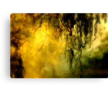 Misty Willow Canvas Print