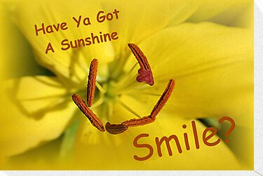 Have Ya Got A Sunshine Smile? by Stephen Thomas