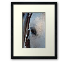 Through the Eye of a Horse Framed Print