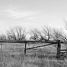 Gate in Kansas Field by Suz Garten