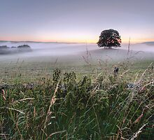 A Yorkshire Dales Dawn by SteveMG