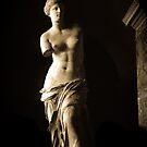 Venus de Milo by Alex Howen