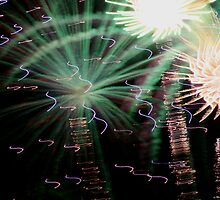 Way Cool Fireworks by ScottVox