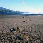Footprints by Digby
