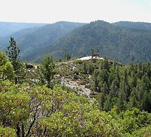 Panoramic View Near Lover's Leap - Alta, California by Laurie Puglia