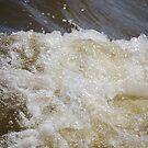 whitecap on the river by JenniferJW