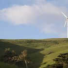Toora Turbines by Leanne Nelson