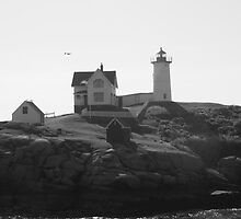 "Cape Neddick ""Nubble Light""  by AntonLee"