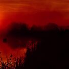 """Barwon Sunrise"" by Phil Thomson IPA"