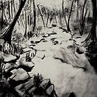 River by the woods  by Sunil Joe Balu & Vijay Moses