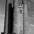 Lusk Round Tower B&W by Martina Fagan