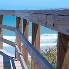 Boardwalk at Playalinda Beach by twinmoon