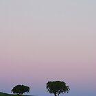 Full moon by andreisky